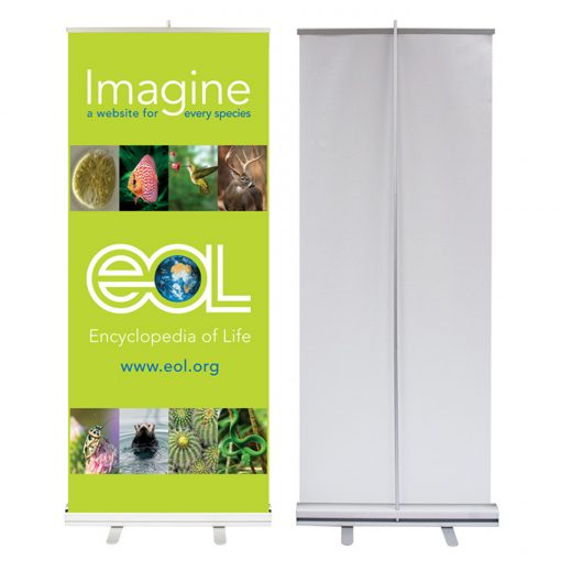 Roll Up Low Cost 85x205cm + Soporte | Mithos Imprenta Online Barata